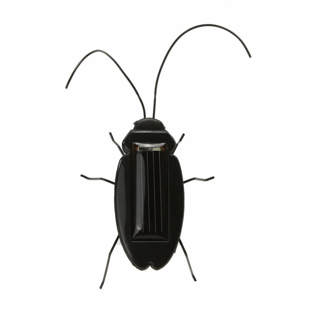 Kakkerlak op zonne energie