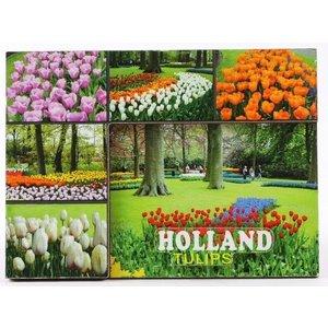 Typisch Hollands Magneet - Keukenhof - Tulpen