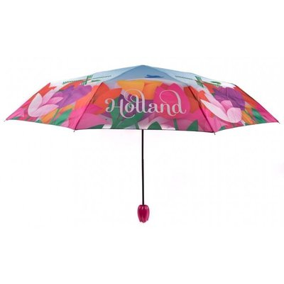 Typisch Hollands Umbrella Tulips - Holland