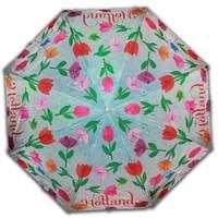 Typisch Hollands Regenschirm Tulpen - Holland