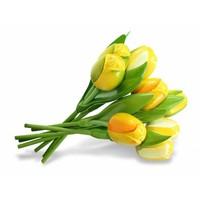 Typisch Hollands Bouquet wooden Tulips