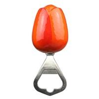 Typisch Hollands Tulpe - Eröffner - Holland - Orange