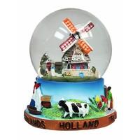 Typisch Hollands Sneeuwbol Hollands glorie - Groot 8 cm