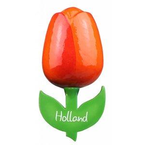 Typisch Hollands Tulip Magnet - Große