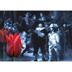 Typisch Hollands Einzelkarte - Nachtwache
