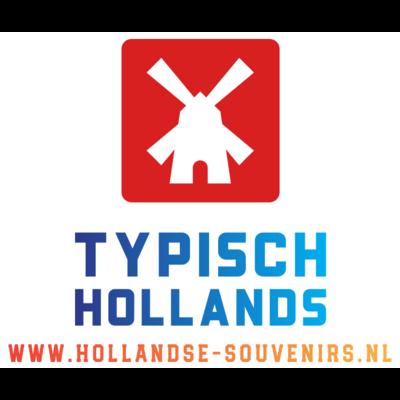 Typisch Hollands 9 small wooden tulips in Delft blue vase