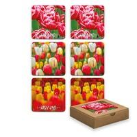 Typisch Hollands Onderzetters - Tulpen - Voorjaar