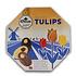 Droste Droste Chocolade Tulpen - Souvenir Edition