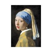 Typisch Hollands Geschirrtuch - Mädchen mit Perlenohrring, Vermeer