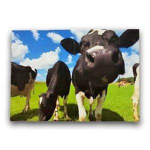 Typisch Hollands Magische vouwkaart - Koeien en Molens - Holland