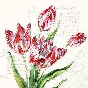 Typisch Hollands Napkins Tulips - botanical