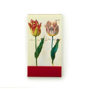 Typisch Hollands Notebook - Pocket size - Jacob Marrel - Two tulips