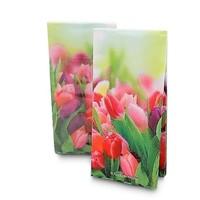 Typisch Hollands Papieren zakdoekjes - Tulpendecor