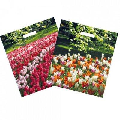 Typisch Hollands Plastic Draagtas Tulpen