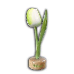 Typisch Hollands Tulp op Voet