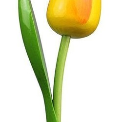 Holz Tulpen (los)