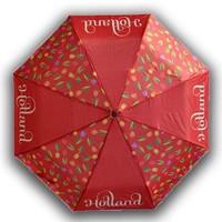 Typisch Hollands Regenschirm Tulpen Holland