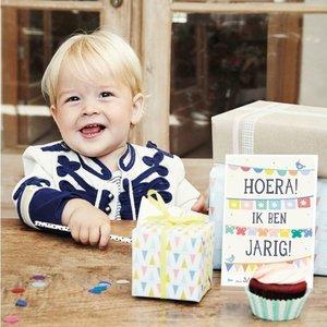 Milestone Babycards Baby's eerste Verjaardag - Foto booklet Milestone