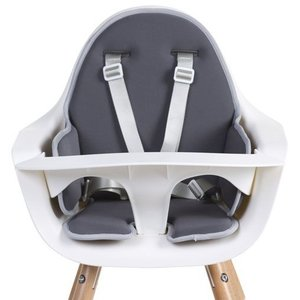 ChildHome Stoelverkleiner voor Evolu high chair