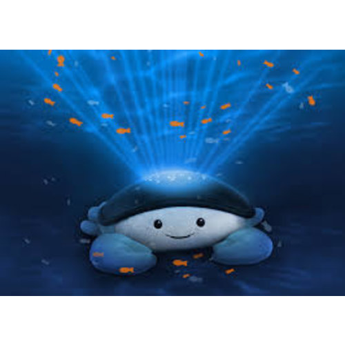 Zazu Cody Ocean musical Projector Cody de krab