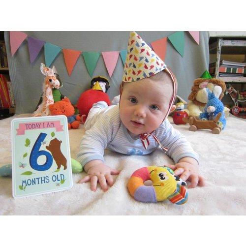 Milestone Babycards Mijlpaal-kaartjes
