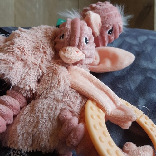 Les Déglingos Bijtspeeltje Baby Pomelos de struisvogel