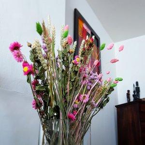Wild Flowers: Droogbloem Market More Multi