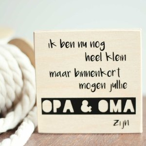 Made for little monkeys BLOKJE – BEKENDMAKING ZWANGERSCHAP