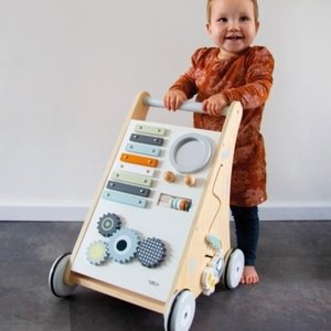 Tryco Wooden Activity Walker