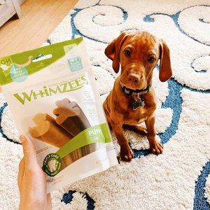 Whimzees Whimzees Puppy Dental sticks 14 stuks