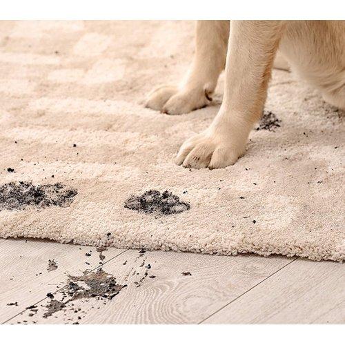 Vanish Pet Expert Tapijt reiniger