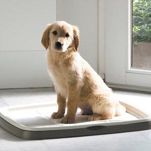 Puppytrainer Zindelijkheidstrainer Middel