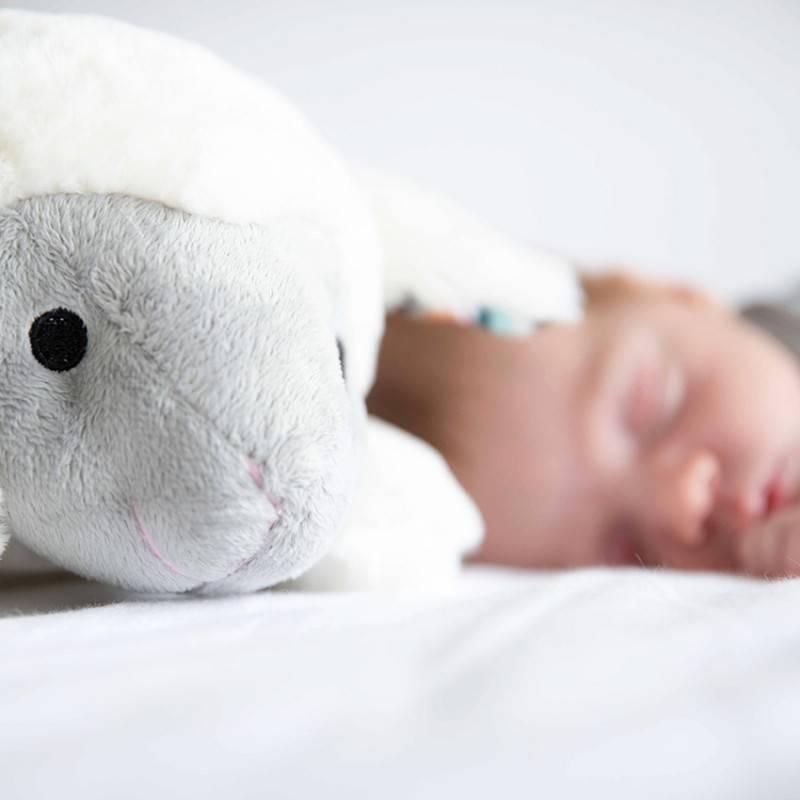 7f8306e92430e3 Zazu nachtvriendjes voor uw kindje bij DeBabykraam - Online ...