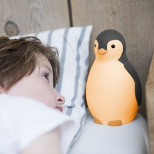 Zazu Pam de Pinguin Grijs 3 in 1 Slaaptrainer