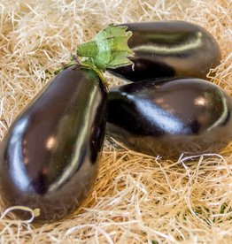 Eggplant (per piece)