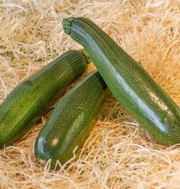 Zucchini (per piece)