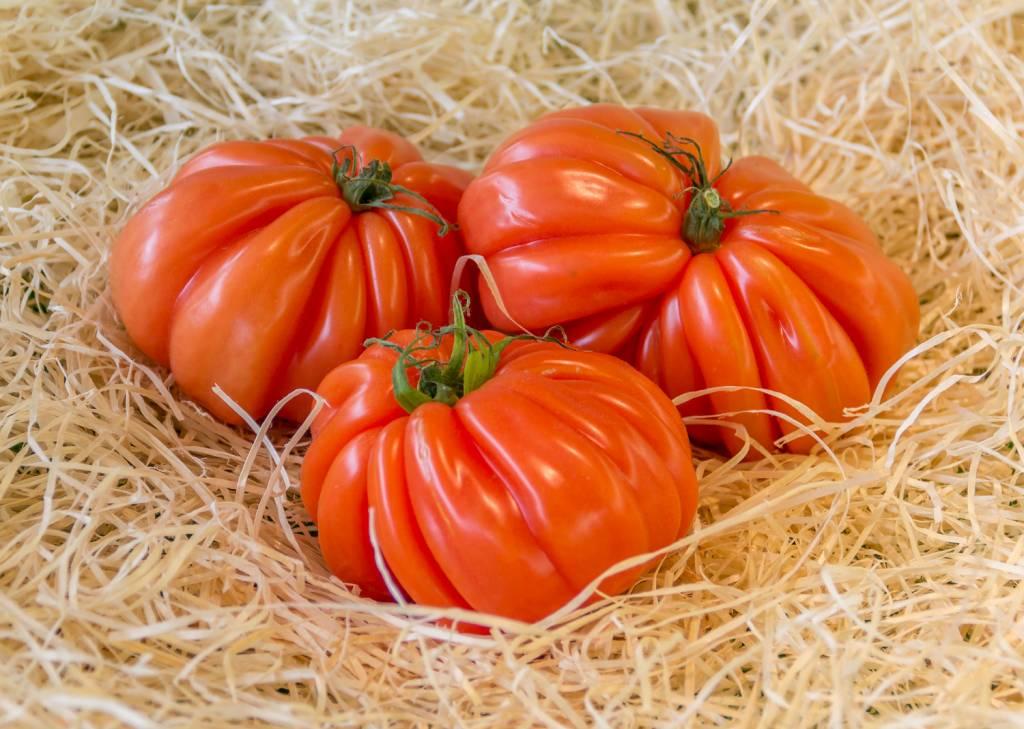 Tomato Coeur de beuf (per piece)