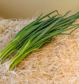 Spring onions (per bunch)