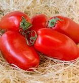Tomato prunella (per ~550 gram)