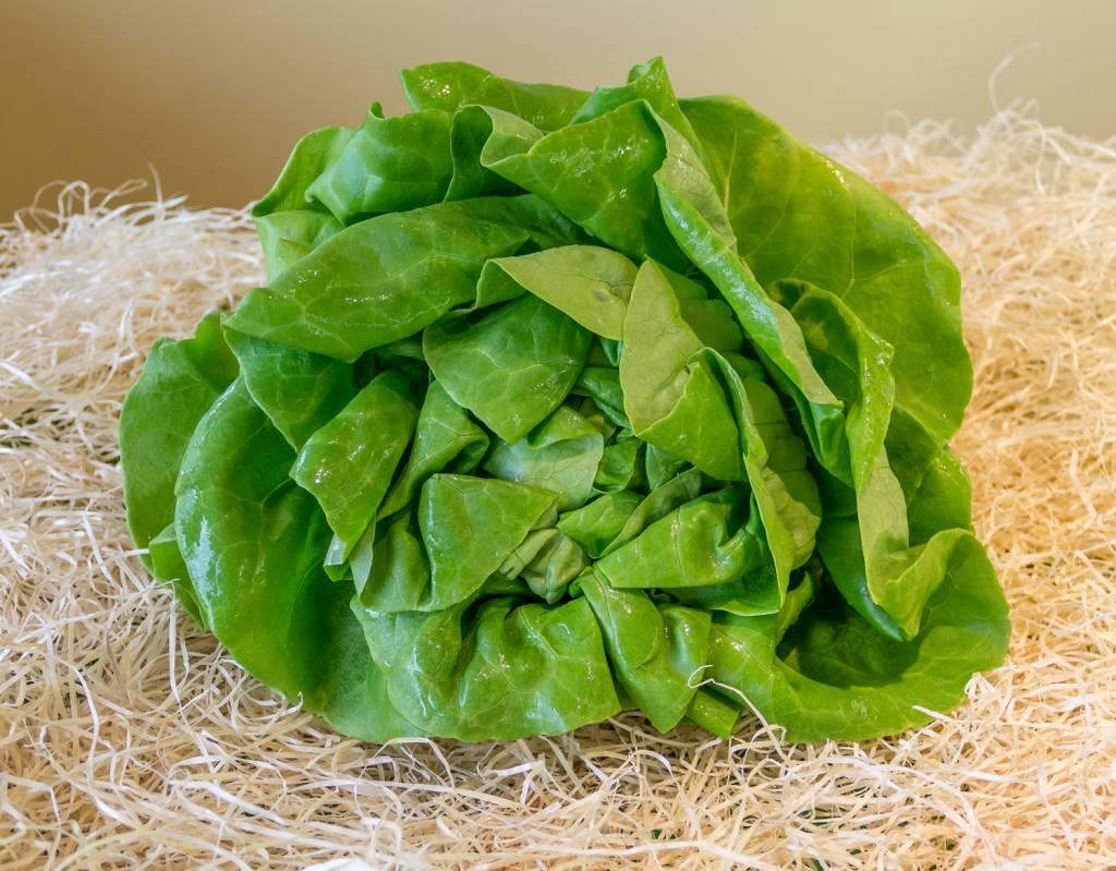 Salad (per piece)