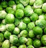 Spruiten (per 100 gram)