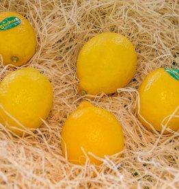 Lemon (per piece)