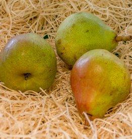 Pear Doyenne (per piece)