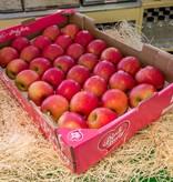 Apple Pink Lady (per piece)
