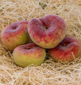 Peach plat Paraguayo (per 100 gram)
