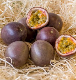 Passion Fruit (per piece)