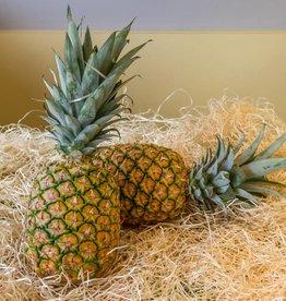 Ananas - ready to eat (per stuk)