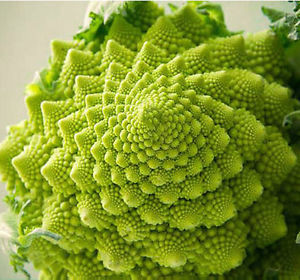 Romanesco (per piece)