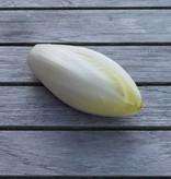Chicory (per 100 gram)