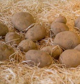 Aardappelen Bintjes (per 100 gram)